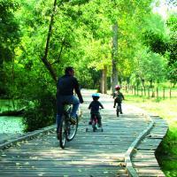 Vélo dans le Marais poitevin