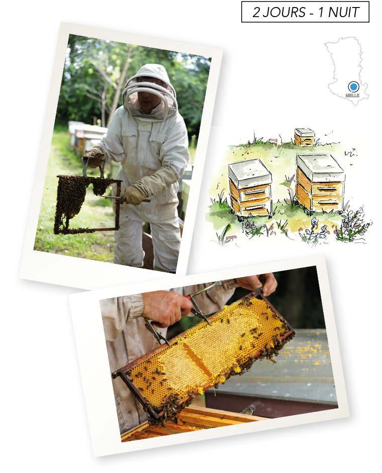 Un week-end en couple, autour du miel et des abeilles